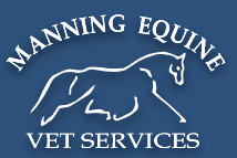 Manning Equine Veterinary Services