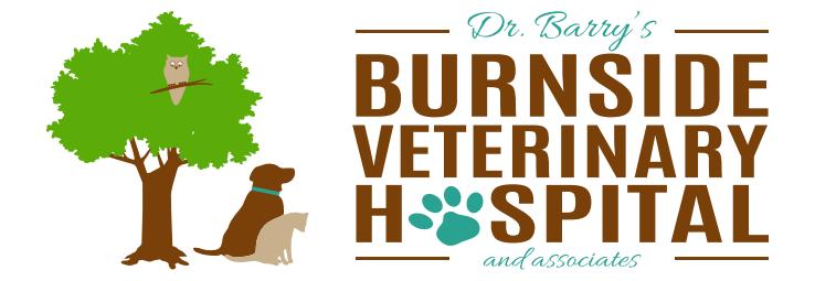 Burnside Veterinary Hospital