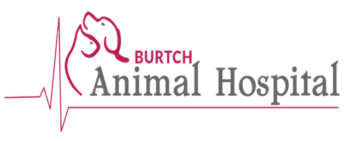 Burtch Animal Hospital